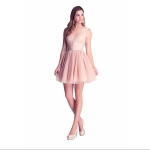 BEBE Fit & Flare Tulle Lace Dress